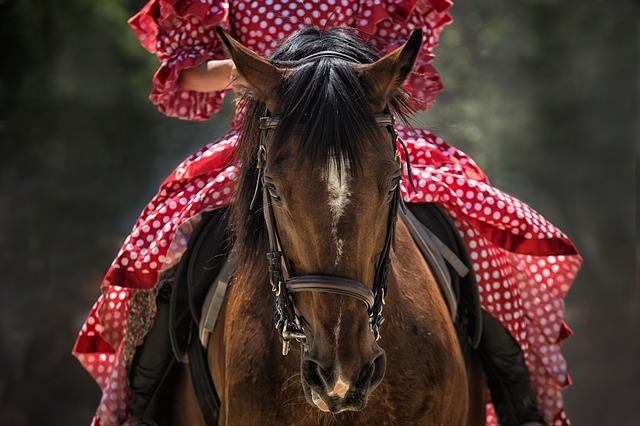 Jaki jest koń, każdy widzi